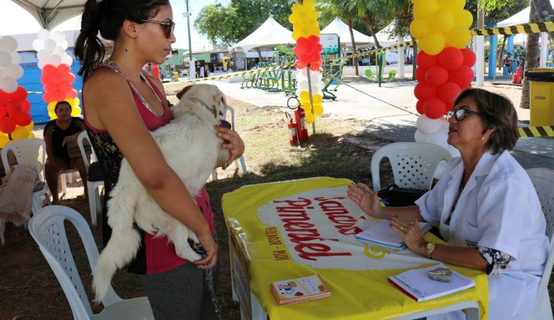 """Evento de proteção animal """"Amor Por Toda Vida"""" acontece no Planalto nesse sábado, 03"""