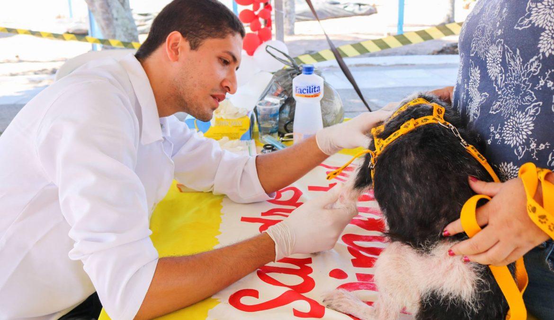 Mandato oferece orientações veterinárias durante Câmara Cidadã em Nazaré