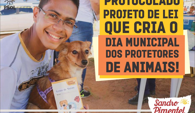 Projeto prevê a criação do dia municipal do protetores de animais
