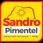 sandro-pimentel-logo
